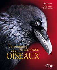 Livre numérique L'étonnante intelligence des oiseaux