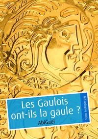 Livre numérique Les Gaulois ont-ils la gaule ? (pulp gay)