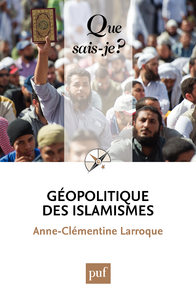 Géopolitique des islamismes, « Que sais-je ? » n° 4014
