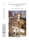 Livre numérique Les inscriptions de la mosquée de Ḏī Bīn au Yémen