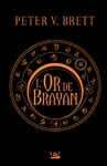 Livre numérique L'Or de Brayan