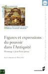 Livre numérique Figures et expressions du pouvoir dans l'Antiquité