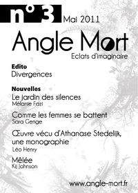 Angle Mort numéro 3