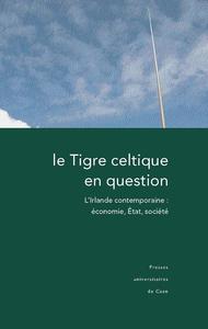 Livre numérique Le Tigre celtique en question