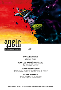 Angle Mort numéro 11