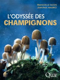 L'odyssée des champignons