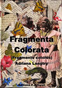 Fragmenta colorata, Fragments colorés