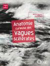 Livre numérique Anatomie curieuse des vagues scélérates