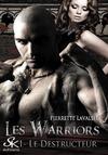 Livre numérique Les Warriors 1