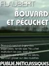 Livre numérique Bouvard et Pécuchet