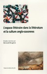 Livre numérique L'Espace littéraire dans la littérature et la culture anglo-saxonnes