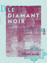 Le Diamant noir, Aventures parisiennes
