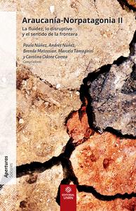 Araucania-Norpatagonia II, La fluidez, lo disruptivo y el sentido de la frontera