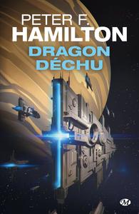 Livre numérique Dragon déchu