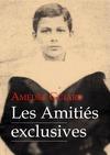 Livre numérique Les Amitiés exclusives (roman gay)