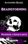 Livre numérique Brainstorming