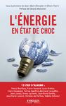 Livre numérique L'énergie en état de choc
