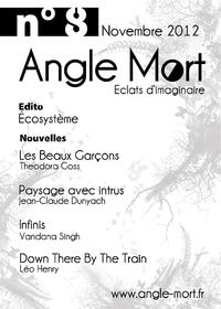 Angle Mort numéro 8