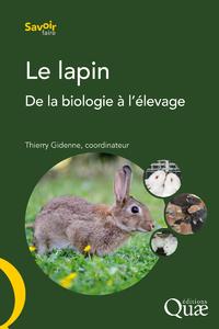 Livre numérique Le lapin