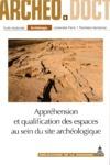 Livre numérique Appréhension et qualification des espaces au sein du site archéologique