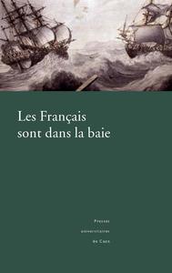Les Français sont dans la baie, L'expédition en baie de Bantry, 1796