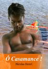 Livre numérique Ô Casamance ! Roman gay