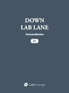 Livre numérique Down Lab Lane: Intermediation