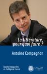 Livre numérique La littérature, pour quoi faire?