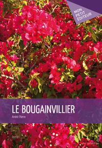 Le Bougainvillier
