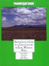 Livre numérique Arqueología de las Lomas en la cuenca lacustre de Zacapu, Michoacán, México