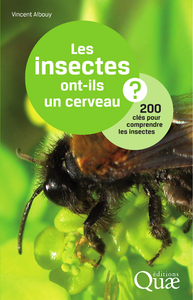 Les insectes ont-ils un cerveau ?