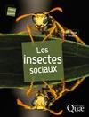 Livre numérique Les insectes sociaux
