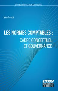 Livre numérique Les normes comptables : cadre conceptuel et gouvernance