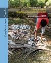 Livre numérique Fisheries in the Pacific