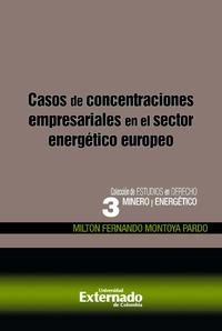 Livre numérique Casos de concentraciones empresariales en el sector energético europeo