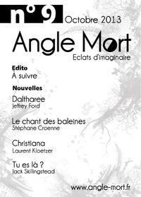 Angle Mort numéro 9
