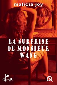La surprise de Monsieur Wang