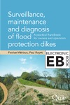 Livre numérique Surveillance, Maintenance and Diagnosis of Flood Protection Dikes