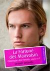 Livre numérique La Fortune des Mauvoisin (érotique gay)