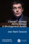 Livre numérique L'énergie: stockage électrochimique et développement durable