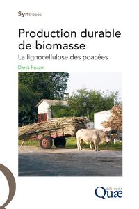 Production durable de biomasse, LA LIGNOCELLULOSE DES POACÉES