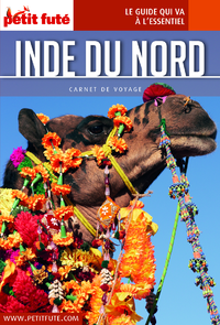 Inde du Nord 2016 Carnet Petit Futé (avec cartes, photos + avis des lecteurs)