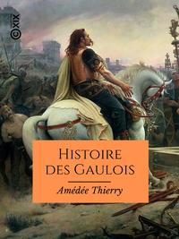 Image de couverture (Histoire des Gaulois)
